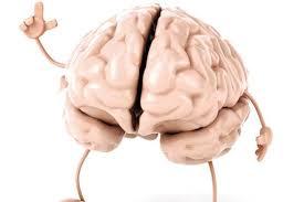 قدر مغزتان را بدانید!