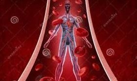 بهترین حرکات ورزشی برای سلامت و تقویت گردش خون در پاها و بدن
