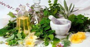 بهترین درمان گیاهی