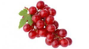 انگور قرمز حاوی رزوراترول می باشد